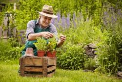 jardinier-jardin-engrais-comptoir-nature