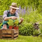Jardinier - Comptoir Nature