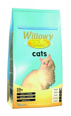 Willow Gold Chat